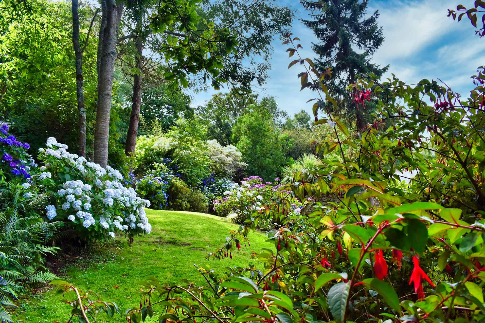 Le Jardin - Les Mots Bleus