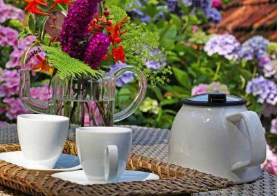 Gîte Les Mot Bleus - Tea Time